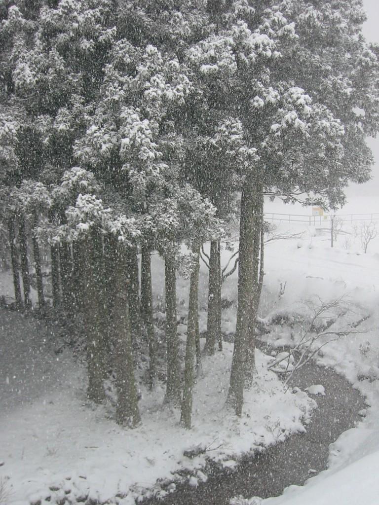 川を有効利用しての除雪
