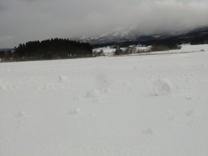 2月15日朝  俵雪